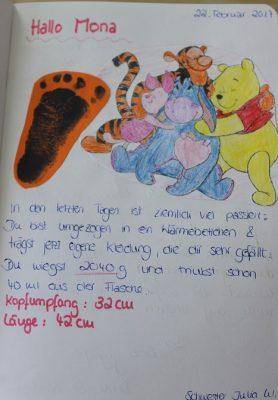 Tagebuch lesen