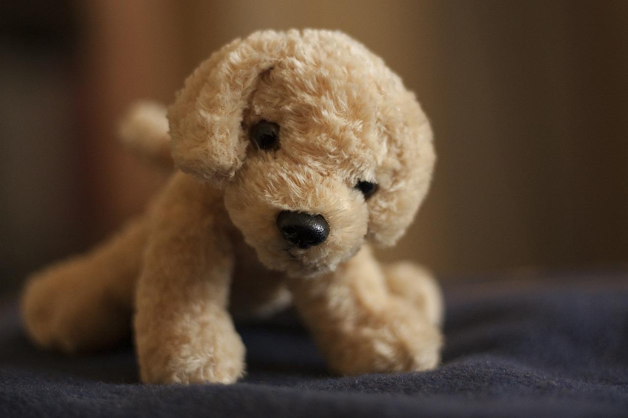 Spielzeughund